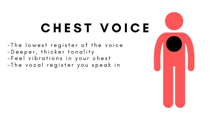 Chest voice is the lowest part of your vocal range.